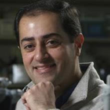 Dr. Shayan Sharif