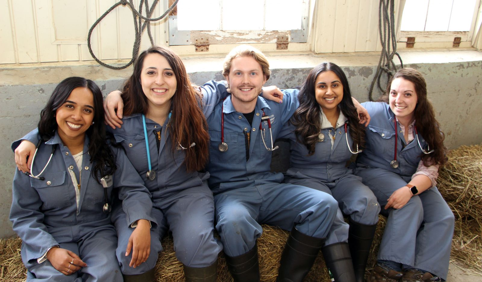 Ontario Veterinary College student veterinarians