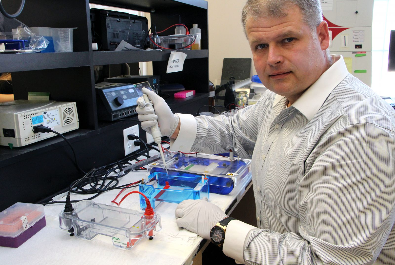 Ovc Scientist Looks To Next Stage Of Ovarian Cancer Research Ontario Veterinary College University Of Guelph