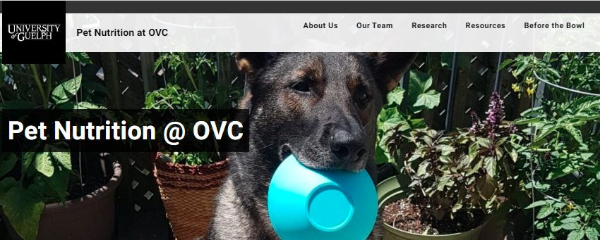 Pet nutrition @ OVC website banner