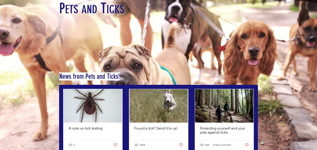 Learn how to protect yourself and your pets from ticks | Ontario