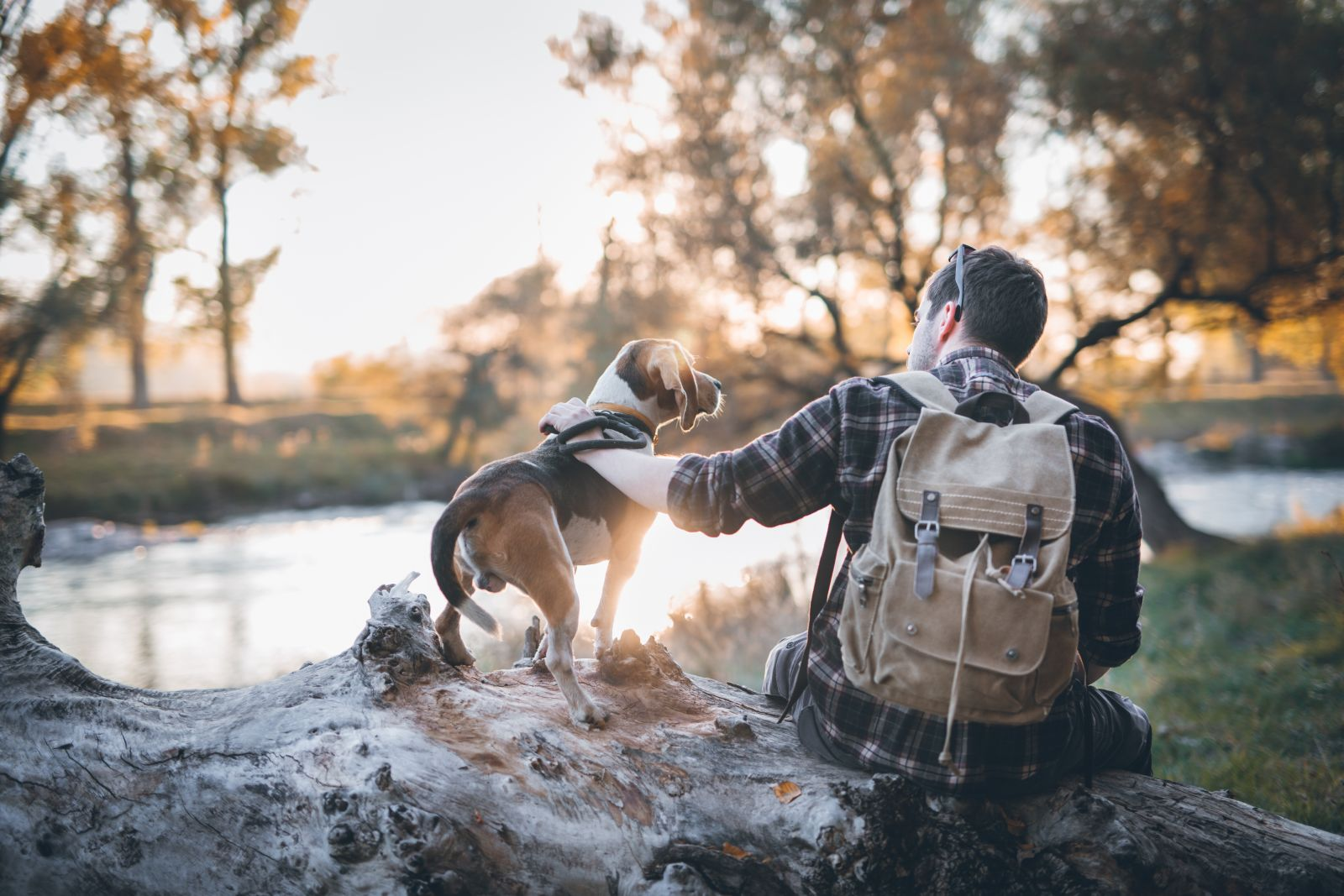 Photo of a man with a dog sitting by a lake